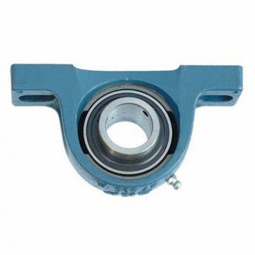 Y-bearing plummer block units pillow block bearing SY 20 TDW YARAG204