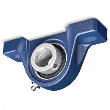 Y-bearing plummer block units pillow block bearing SY 20 WDW YELAG204